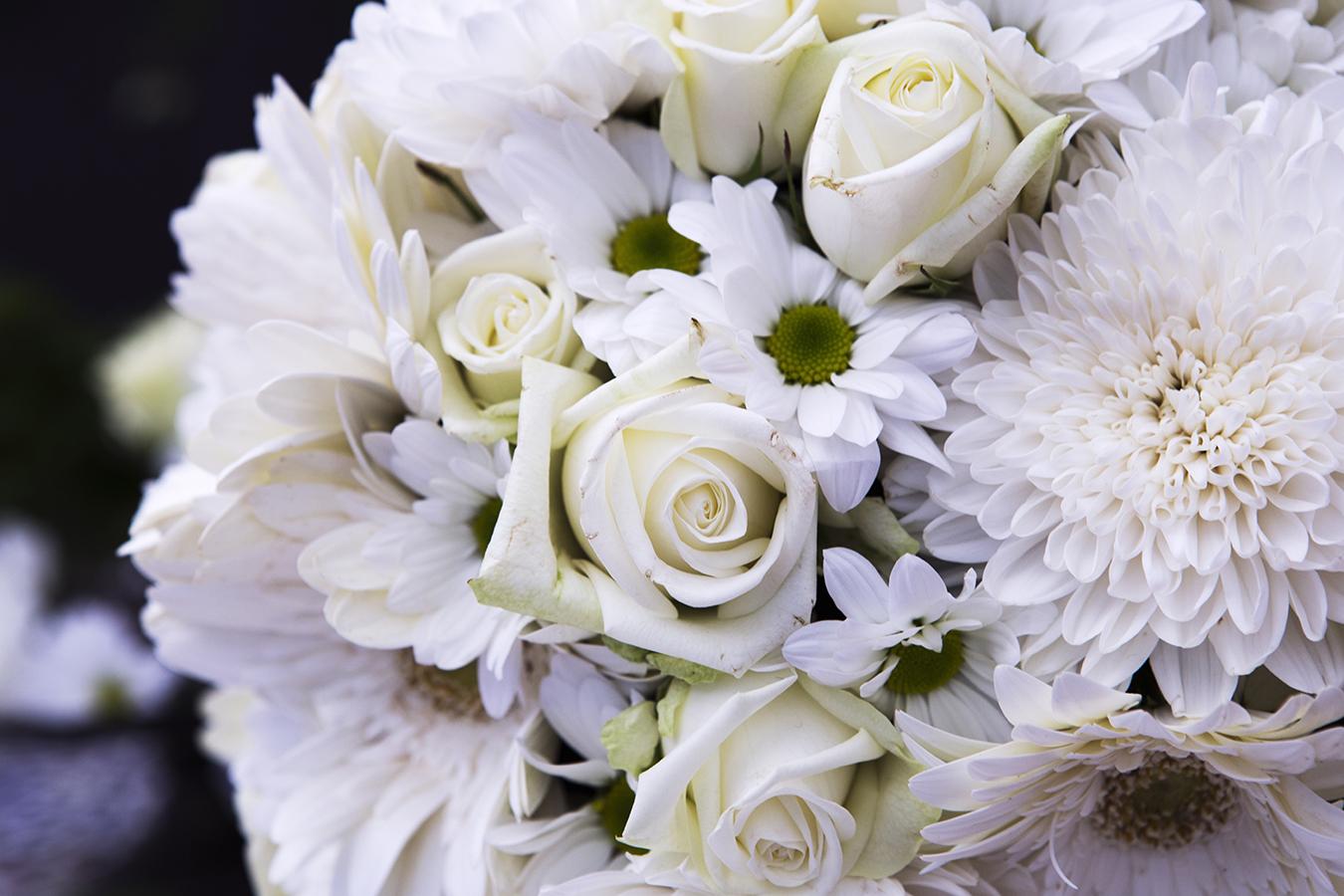 Flower_IMG_60321