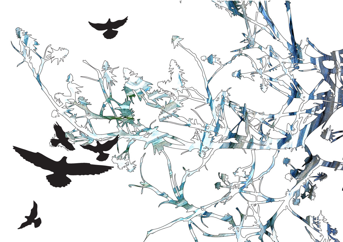 bird_of_Prey_TM10
